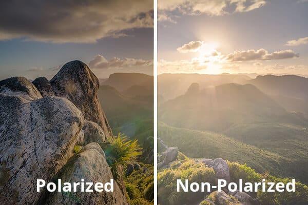 Polarized vs. Non-polarized